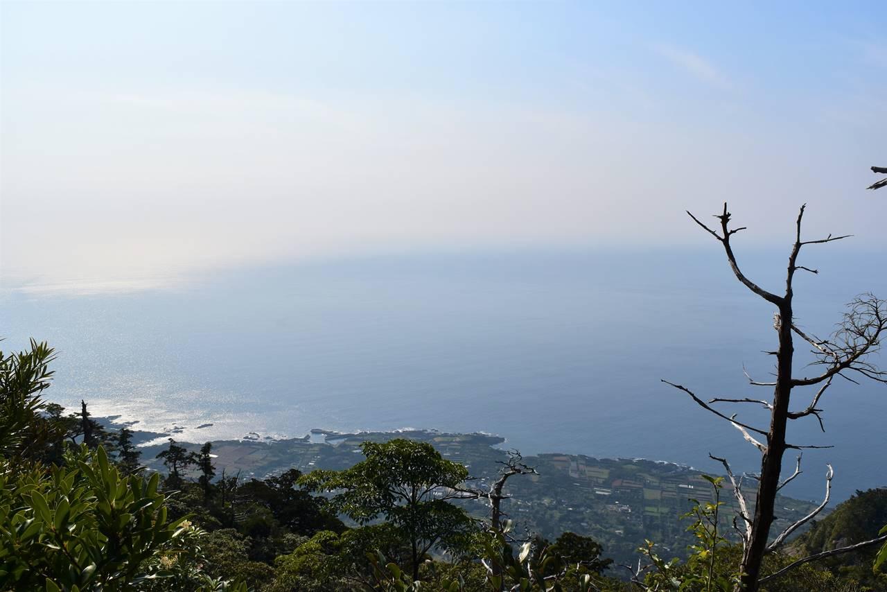 神山展望台からの海の眺め