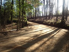 Winding Stair Gap Road