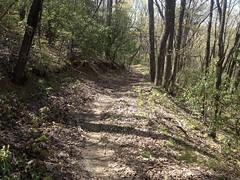 Bull Mountain Trail