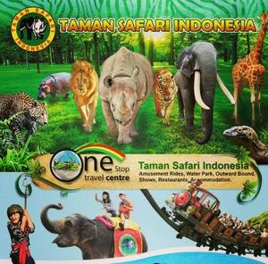 Field Trip TK ke Taman Safari Indonesia