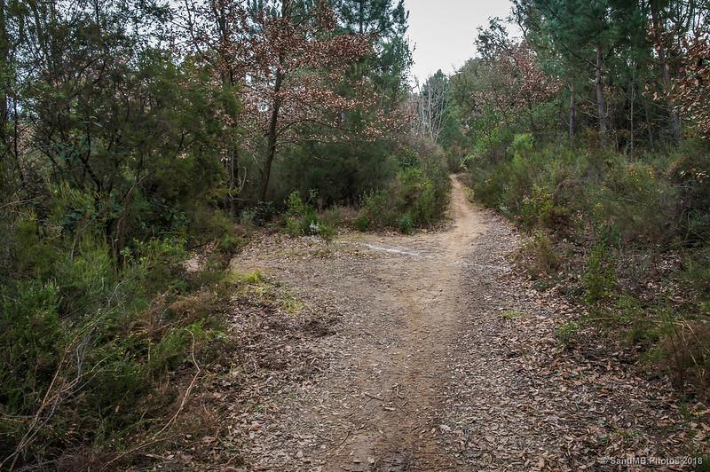 Señal contradictoria en un cruce de caminos volviendo a Sant Llop de Viabrea