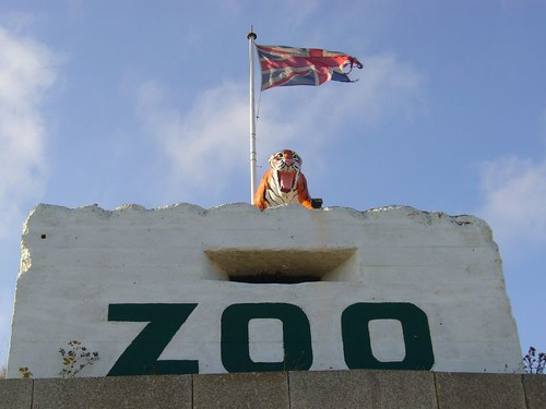 Zoo | by Will Lord