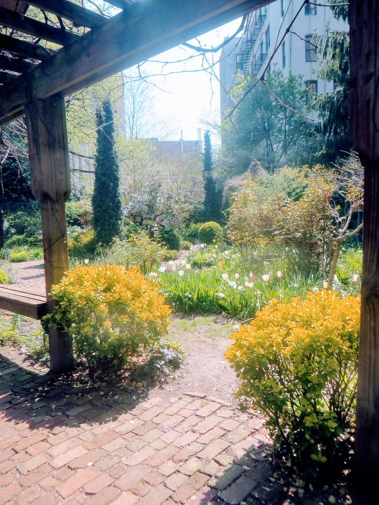 6BC Botanical Garden   By Edenpictures 6BC Botanical Garden   By  Edenpictures