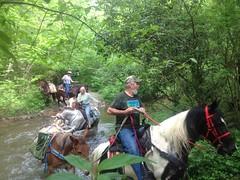 Crossing the Creek 1