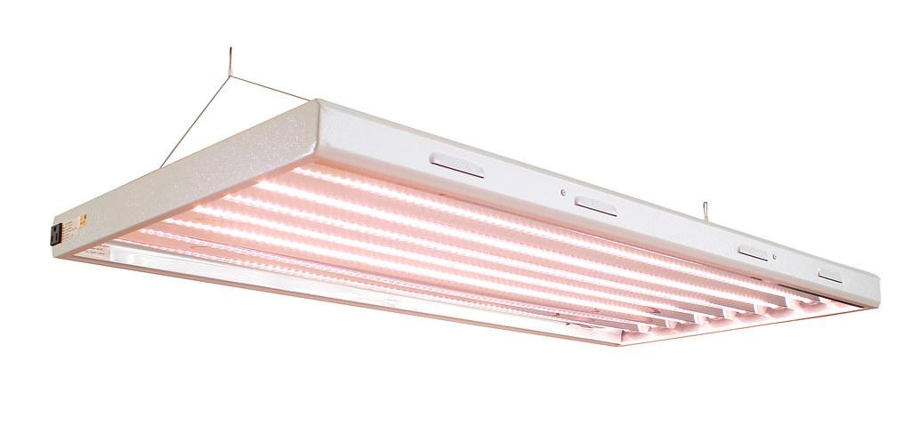 LED T5燈管。圖片來源:honey(CC0 1.0)
