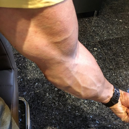 Goldenera Oldschool Log Building Muscle Erfahrungsberichte