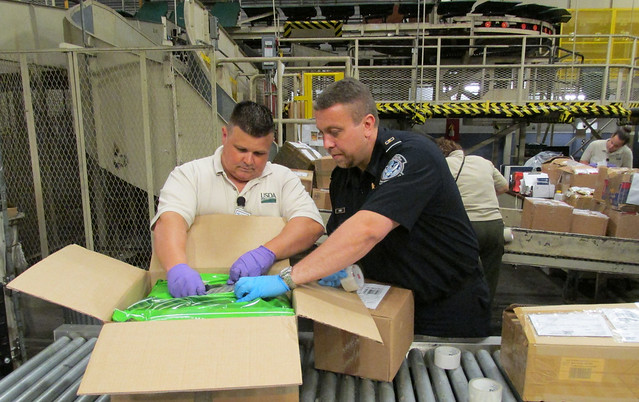A U.S. Customs and Border Protection agriculture specialist, with assistance from SITC, inspecting a parcel
