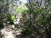 Sur le sentier de Pastricciola après avoir traversé le Vivaghju