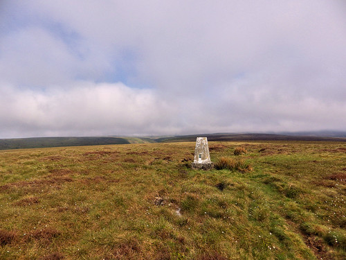 Westend Moor trig point