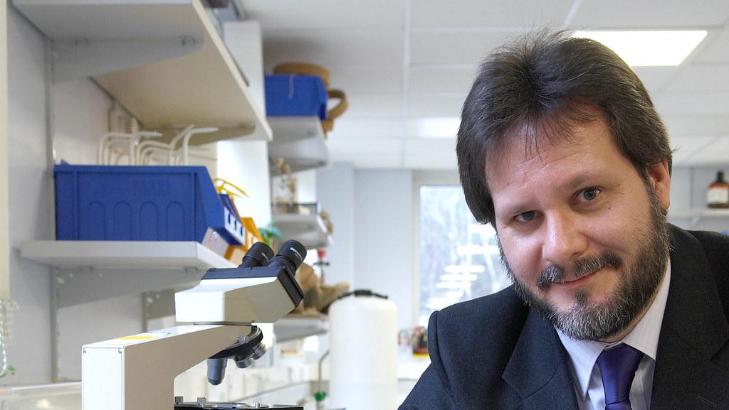 Dr Matthew Wills