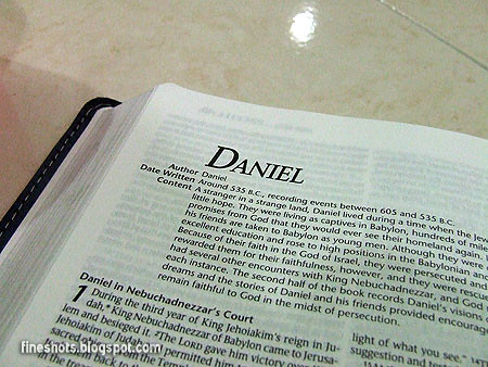 an essay on chapter captions for the book of daniel in the bible Obedience to god through daniel essaysthere are a lot of different things the bible can tell us about obedience and disobedience many of which have the same outcome.