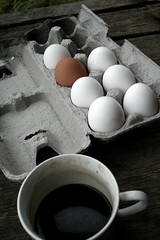 Odd Egg Out | by melanie.phung