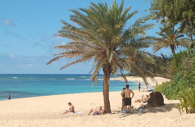 Oahu Polynesian Adventure Tours