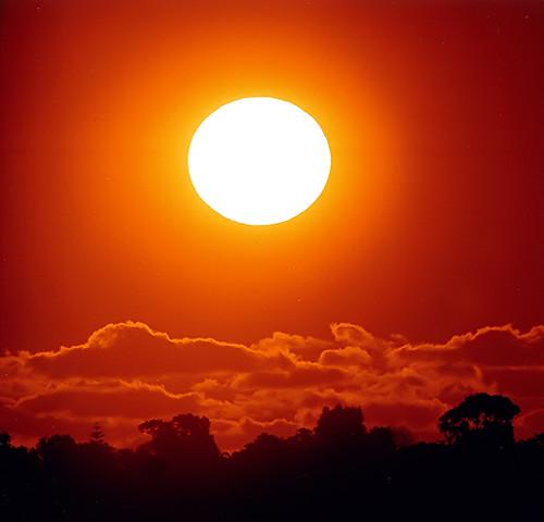 Big Sun Ta Details Om2 600mm F6 5 Fuji Superia 400