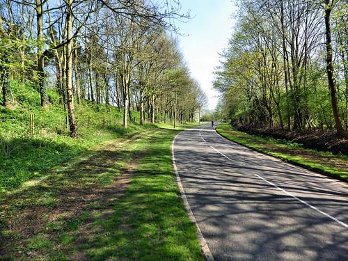 Walking down Adbolton Lane