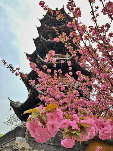 Pagoda del templo del dragón de Shanghái (China)