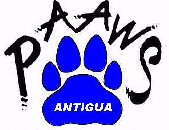 PAAWS Antigua animal shelter dadli dogs