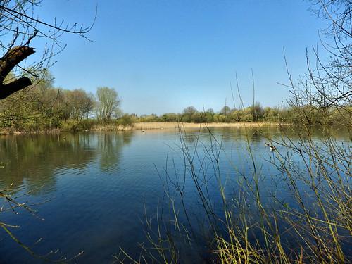 Skylarks Nature Reserve