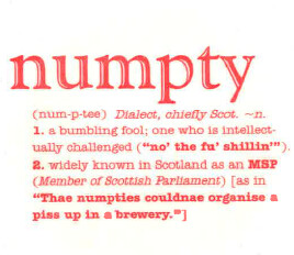 numpty | by NomadWarMachine