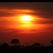 Sunset over the Savuti Marsh