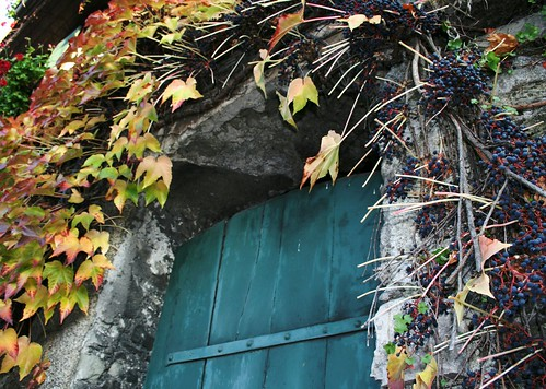 door with vines and berries | by Vol-au-Vent