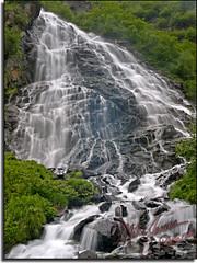 Horestail Falls 5630