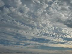 Alareunassa tummina läikkinä (ylemmät pilvet varjostivat) kumpupilviä liikkeessä itään-kaakkoon. Yllä kylmän rintaman untuva- ja hahtuvapilvinauhoja liikkeessä kaakkoon illansuussa