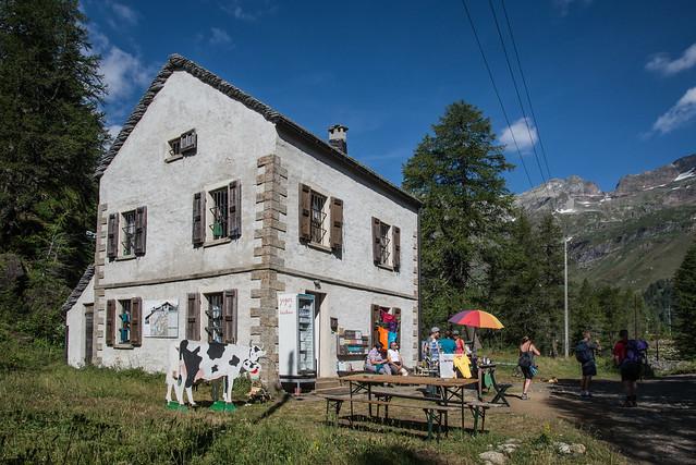 Vendita formaggi - Alpe Veglia