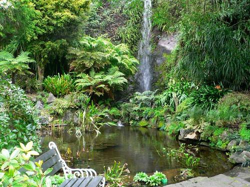 Eden gardens epsom auckland new zealand idyllic for Landscaping jobs auckland