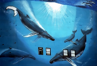 Chicago - Whales Outside The Office Window! | by David Paul Ohmer