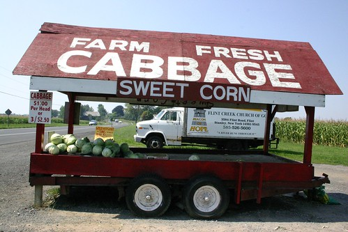 110_110 Farm fresh Cabbage Flint NY | by photosfromonhigh