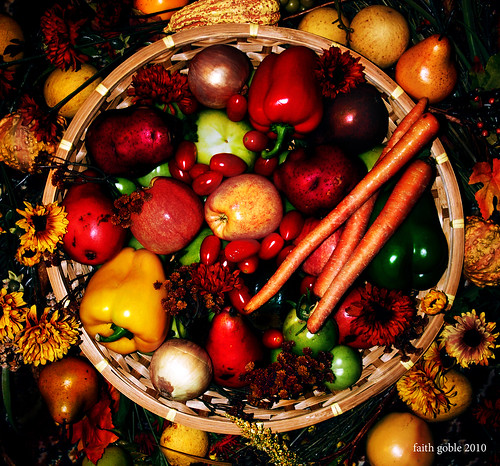 Happy Thanksgiving | by faith goble