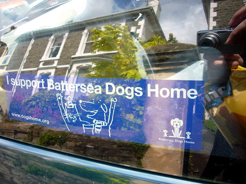 Battersea Dogs Home Chsrity Event
