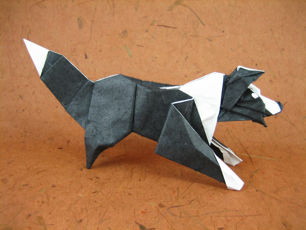 Border collie designed on march 2005 paper one uncut squ flickr border collie by quentin origami jeuxipadfo Image collections
