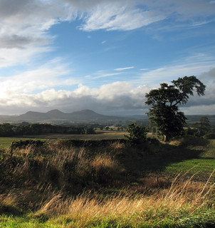Eildons from Steelmoor | by billtam