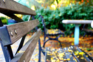Park Benches | by Heidi Yanulis Photography