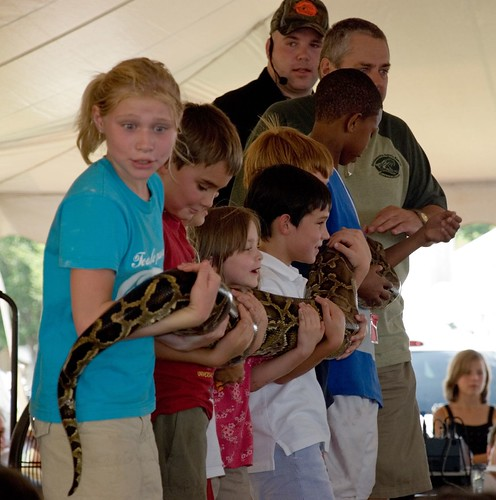 Children hold a Burmese Python | by DashTapper
