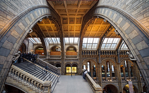 Natural History Museum 2 | by Philipp Klinger Photography