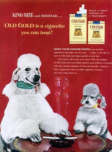 Solid Gold Barking At The Moon Dog Food Recall