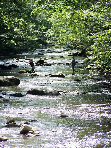 Fly fishing elkmont smoky mtn tennessee fishing not so for Fishing in gatlinburg tn