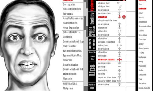 paul ekman s experiment on facial expressionsns