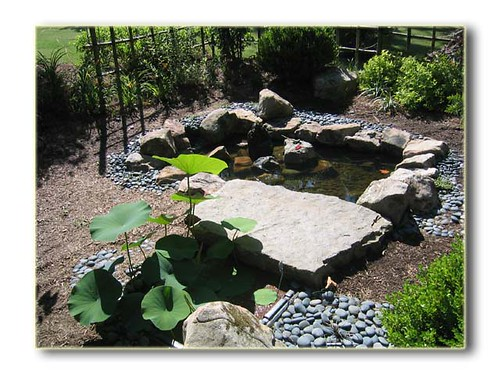 Memphis Botanical Garden Tea Room Rental