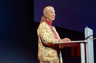 Jane Goodall | by whiteafrican