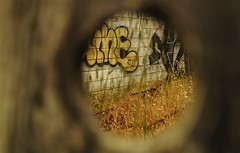 through a hole in the fence | by Bird in the Hand