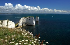 Old Harry Rocks | by flash of light