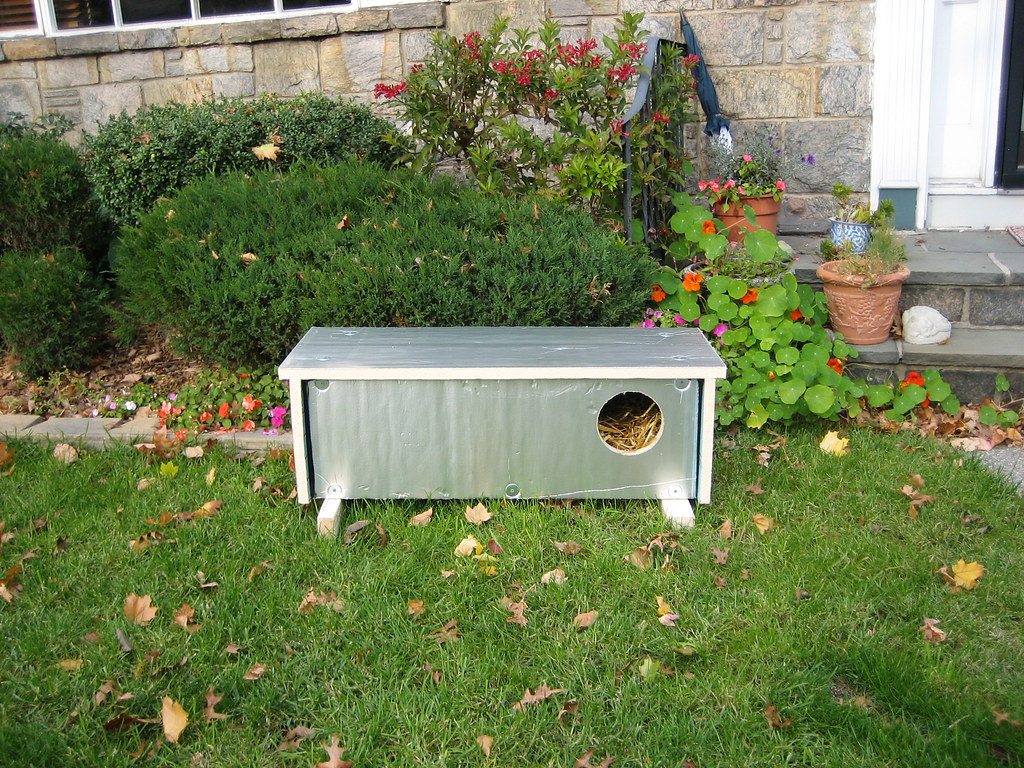 ashots insulated feral cat shelter flickr