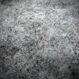 dryer lint | by bunnyfrogs