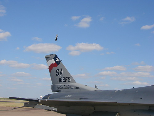 Falcon And A Buzzard F 16c 149th Fighter Wing 182nd