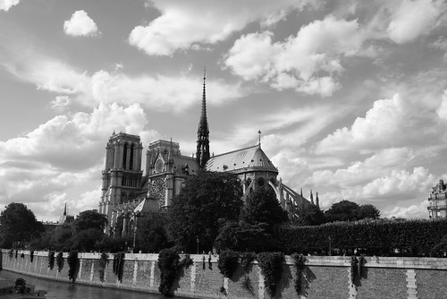 Notre Dame | by aliona's photos