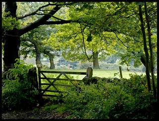 Through the gate | by BingleymanPhotos